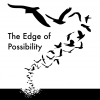 The Edge of Possibility Giveaway