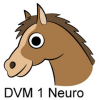 DVM 1st Yr Quiz - Neurology Giveaway