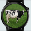 Moo Cow for Android Wear Giveaway
