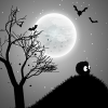 The Zamazingo - Dark Adventure Land Giveaway