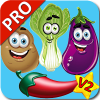 Vegetable Flashcards V2 PRO Giveaway