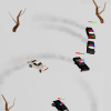 Survival Derby 3D - car racing & running game Giveaway