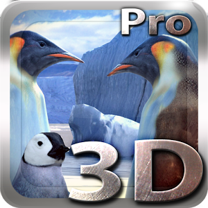 Penguins 3D Pro Live Wallpaper Giveaway