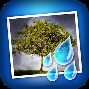 Rainy Daze Giveaway